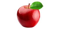 Apfel (frisch)