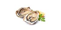 Austern (roh)