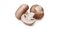Champignons, Pilze (Konserve)