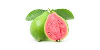 Guave (frisch)
