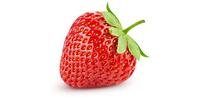Erdbeere (in Sirup, Konserve)