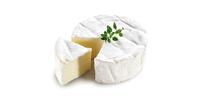Brie Käse (50% Fett i.Tr.)