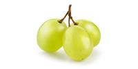 Weintrauben (frisch)