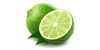 Limetten, Limone (frisch)